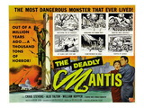 The Deadly Mantis, Bottom Right, From Left: Alix Talton, Craig Stevens, 1957
