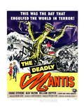 The Deadly Mantis, Bottom From Left: Alix Talton, Craig Stevens, 1957