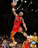 Dennis Rodman 1995-96 Action