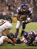 Chicago Bears and Minnesota Vikings NFL: Adrian Peterson