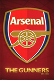 Arsenal FC The Gunners Club Crest