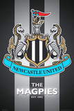 Newcastle United FC - The Magpies Club Crest