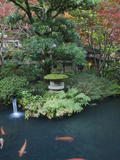 Buy Japanese Garden, Tokyo, Japan at AllPosters.com