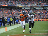NFL Playoffs 2013: Ravens vs Broncos - Knowshon Moreno