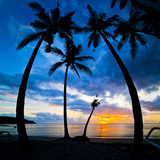 Silhouette of Palm Trees at Sunset, Nippah Beach, Lombok, Indonesia, Southeast Asia, Asia
