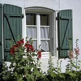 Typical Scene of Shuttered Windows and Hollyhocks, St. Martin, Ile de Re, Poitou-Charentes, France