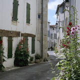 Typical Street Scene with Hollyhocks, St. Martin, Ile de Re, Poitou-Charentes, France, Europe