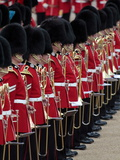 Soldiers at Trooping Colour 2012, Queen's Birthday Parade, Horse Guards, Whitehall, London, England