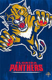 Florida Panthers - Logo