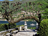 Buy Garden at the Waterfront with a Town in the Background, Torno, Moltrasio, Lake Como, Lombardy, I... at AllPosters.com