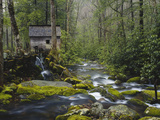 Buy Watermill in Forest by Stream, Roaring Fork, Great Smoky Mountains National Park, Tennessee, USA at AllPosters.com