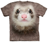 Ferret Face