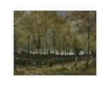 Buy Poplars near Nuenen, 1885 at AllPosters.com