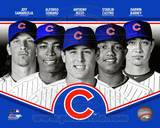 Chicago Cubs 2013 Team Composite