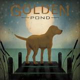 Moonrise Yellow Dog - Golden Pond