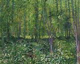 Trees and Undergrowth, c.1887 Art Print