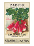 Seed Packet, Radishes