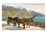 Ox Cart on Lago Di Garda, Italy