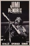 Jimi Hendrix Copenhagen 1970 Music Poster Poster