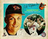 Cal Ripken,Jr. 2013 Studio Plus
