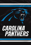 NFL Carolina Panthers 2-Sided House Banner