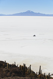 Tourist Jeep on Salar de Uyuni from Isla del Pescado (Fish Island), Potosi Department, Bolivia