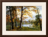 A Quiet Lake Framed Giclee Print