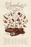 Chocolate Educational Food Poster Poster
