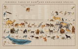 Periodic Table of the Rare and Endangered Species Educational Poster