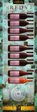 California Reds Educational Wine Poster Poster