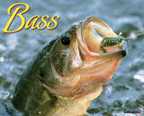 Buy Bass - 2014 16-Month Calendar at AllPosters.com