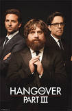 The Hangover III - Trio Movie Poster