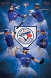 Toronto Blue Jays Team Baseball Poster