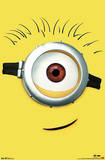Despicable Me 2 Carl Movie Poster
