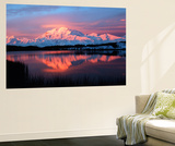 Lake with Mt McKinley, Denali National Park and Preserve, Alaska, USA Giant Art Print