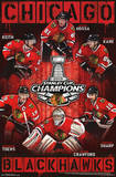 Chicago Blackhawks 2013 Stanley Cup Champions