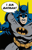 Batman - I Am Batman Pop Art Comics Poster
