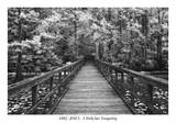 Buy A Walk Into Tranquility at AllPosters.com