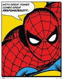 Marvel Classic- Spider-Man (Quote)