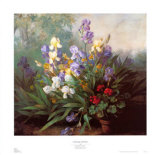 Landscape with Irises