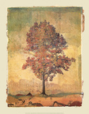 Autumn Tree Study I