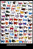 100 Cats and a Mouse Art Print