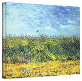 Buy Vincent van Gogh 'Green Wheat Fields' Wrapped Canvas Art at AllPosters.com