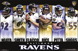 Baltimore Ravens Team NFL Sports Poster Poster