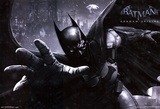 Batman Arkham Origins Video Game Poster