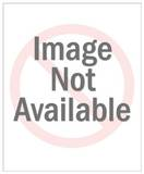 Jackie Robinson Stealing Home Poster Premium Poster