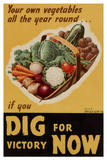 Dig for Victory - WWII War Propaganda Poster