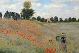 Buy Claude Monet Poppies Art Print Poster at AllPosters.com