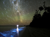 Star Trails And Bioluminescence, Gippsland Lakes, Australia