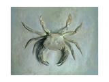 Velvet Crab, 1870-1